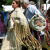 Thunder Mountain Native American Festival